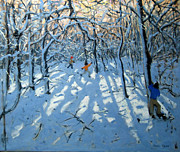 Andrew Macara - Winter woodland near Newhaven Derbyshire