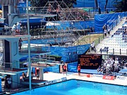 Sport Photography Originals - World Swimming Championship Rome Platform Dive Final by John Vito Figorito