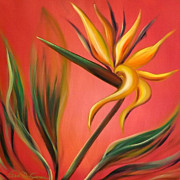 Bird Of Paradise Fine Art Print by Gina De Gorna