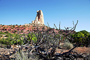 Panoramic Pyrography - San Rafael Swell by Southern Utah  Photography