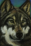 Native American Spirit Portrait Pastels Prints - Blue Wolf Print by Lucy Deane