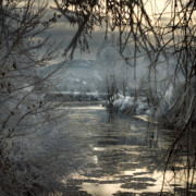 Angel  Tarantella - by the frozen river Wye