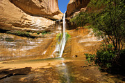 Adam Jewell - Calf Creek Falls Canyon