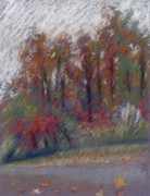Suzie Majikol-Maier - North Carolina Autumn