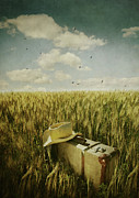 Sandra Cunningham - Old suitcase with straw hat in field