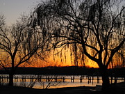 Chesapeake Bay Region Framed Prints - Sunset Over South River Framed Print by Valia Bradshaw