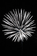 July 4th Prints Framed Prints - Fireworks Photograph Framed Print by Meg Rousher