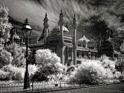 Infer Prints - Brighton Royal Pavilion - Infrared Print by Steven Cragg