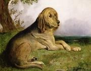 English school - A Bloodhound in a Landscape