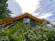 Augusta Stylianou - A flowery house in Norway