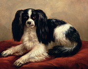 Eugene Joseph Verboeckhoven - A King Charles Spaniel Seated on a Red...