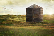 Sandra Cunningham - Abandoned wood grain storage bin in...