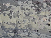 B Rossitto - Abstract from Nature in Grey Tree Bark