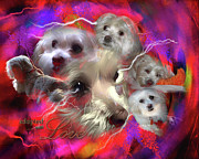 Animal Shelter Digital Art - Adopted with Love by Kathy Tarochione