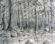 Creeks Drawings Prints - After the Flash Flood Print by Jim Hubbard