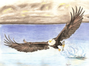 Fish Drawings - American Bald Eagle captures Fish by Russ  Smith