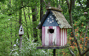 American Flag Colors Framed Prints - American Birdhouse Framed Print by Steven  Michael