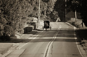 Amish Prints - Amish Buggy - Lancaster County Pa Print by Bill Cannon