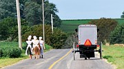 TSC Photography Timothy Cuffe Jr - Amish42