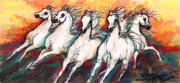 Stacey Mayer - Arabian Sunset Horses