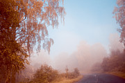 Jenny Rainbow - Autumn Fairytale. Misty Roads of...