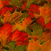 Wingsdomain Art and Photography - Autumn Leaves - Version 2 - Square