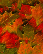 Wingsdomain Art and Photography - Autumn Leaves - Version 2