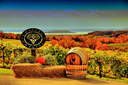 Traverse Bay Photos - Autumn on Old Mission Peninsula by Matthew Winn