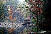Autumn On Whipples Dam Print by L Granville Laird
