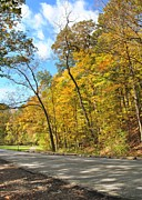 Fall Road Posters - Autumn Road Poster by Robert Harmon