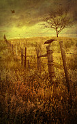 Sandra Cunningham - Autumn scene on the prairies with crow...