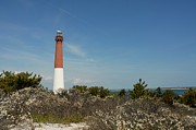 Barnegat Inlet Prints - Barnegat Lighthouse 66 Print by Joyce StJames