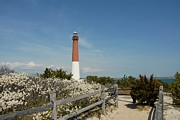 Barnegat Inlet Prints - Barnegat Lighthouse 68 Print by Joyce StJames