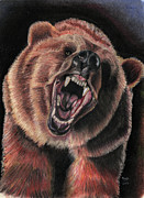 Grizzly Pastels Prints - Bear Greetings Print by Russ  Smith