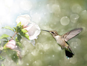 Althea Photos - Beauty in flight by Sari ONeal