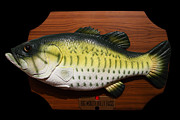 Wingsdomain Art and Photography - Big Mouth Billy Bass . 7D13533