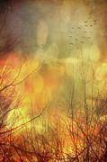 Ghostly Art - Birds in flight at sunset by Sandra Cunningham