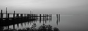 Concord Point Metal Prints - Black and White Dock Metal Print by Crystal Wightman