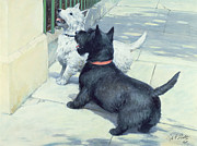 Septimus Edwin Scott - Black and White Dogs
