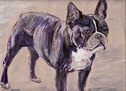 Arthur Rice - Black Frenchie