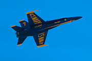 Mark Dodd - Blue Angels 20