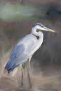 Designers Choice Paintings - Blue Heron Painting III by Don  Wright
