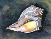 Barbara Jewell - Blue-knobbed Whelk