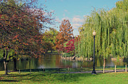 Boston Acrylic Prints - Boston Public Gardens 2 by Kathy Dahmen