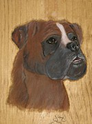 Boxer Pyrography Originals - Boxer by John  Lang