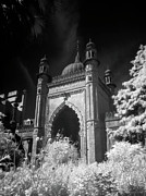 Infer Prints - Brighton Pavilion Gate - Infrared  Print by Steven Cragg