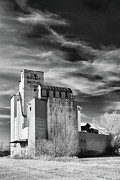 Skylines Photo Originals - Buffalo Malting Corp by Guy Whiteley