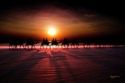 Andrew Dickman - Cable Beach Camel Ride