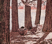 Cheryl Young - Canoe in the Woods