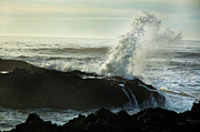 Newport Photos - Cape Perpetua by Becky Thompson